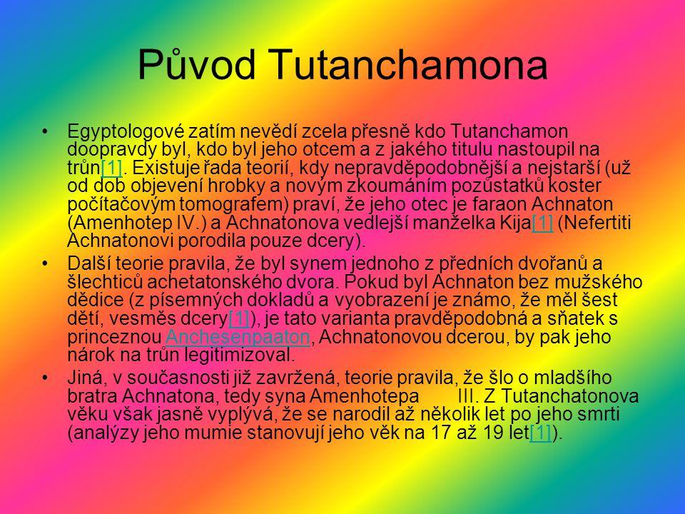 Původ Tutanchamona Egyptologové zatím nevědí zcela přesně kdo Tutanchamon doopravdy byl, kdo byl jeho otcem a z jakého titulu nastoupil na trůn[1]. Ex