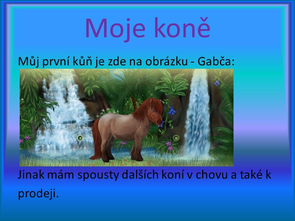 Moje koně Můj první kůň je zde na obrázku - Gabča: Jinak mám spousty dalších koní v chovu a také k prodeji.