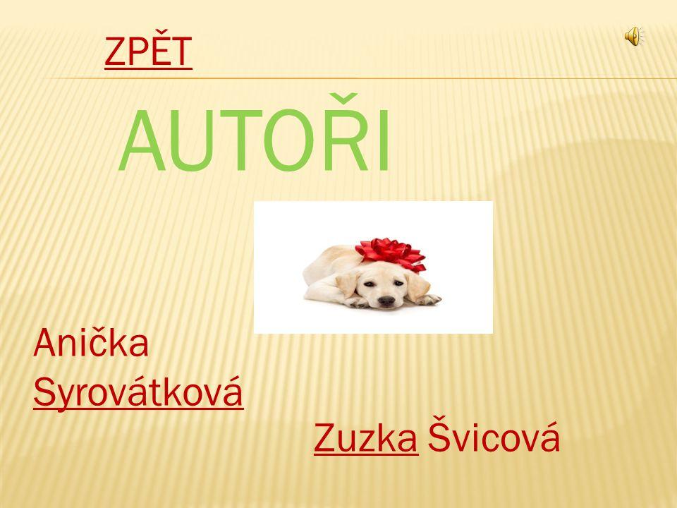 Anička Syrovátková Syrovátková ZuzkaZuzka Švicová ZPĚT