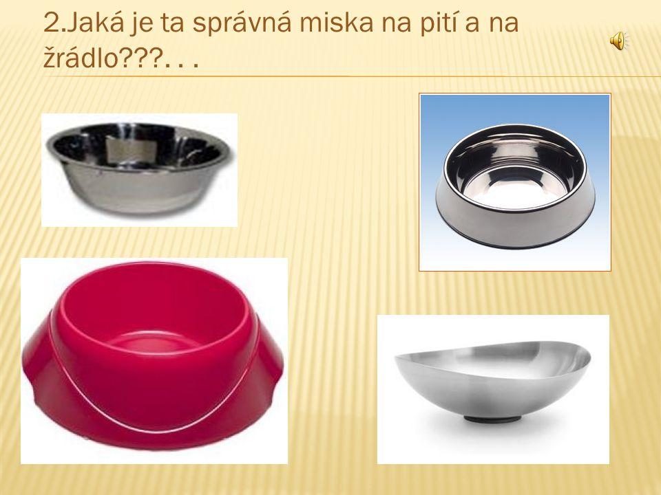 2.Jaká je ta správná miska na pití a na žrádlo???...