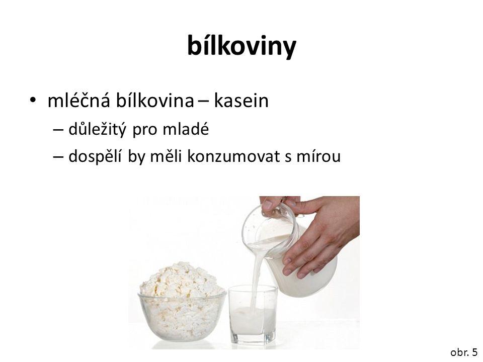 bílkoviny mléčná bílkovina – kasein – důležitý pro mladé – dospělí by měli konzumovat s mírou obr. 5