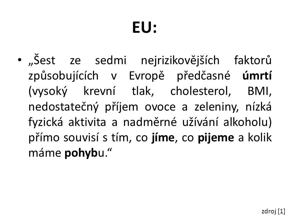 """EU: """"Šest ze sedmi nejrizikovějších faktorů způsobujících v Evropě předčasné úmrtí (vysoký krevní tlak, cholesterol, BMI, nedostatečný příjem ovoce a"""