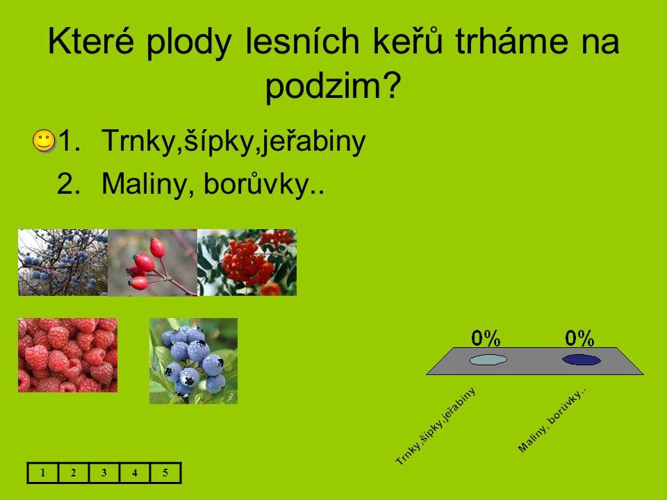 Které plody lesních keřů trháme na podzim? 12345 1.Trnky,šípky,jeřabiny 2.Maliny, borůvky..