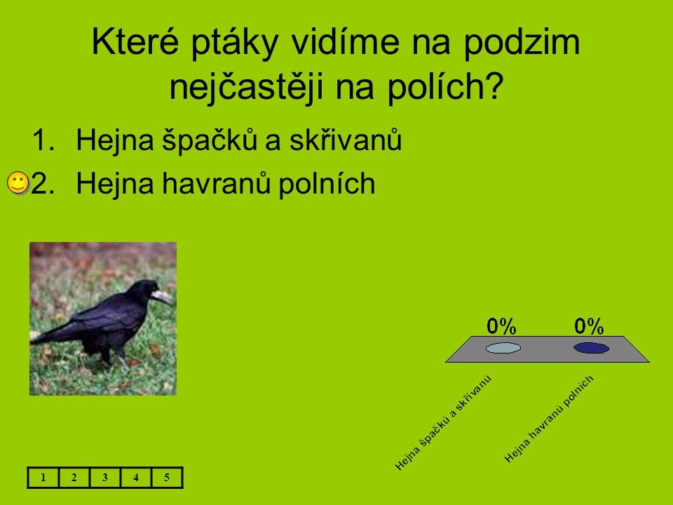 Které ptáky vidíme na podzim nejčastěji na polích? 1.Hejna špačků a skřivanů 2.Hejna havranů polních 12345