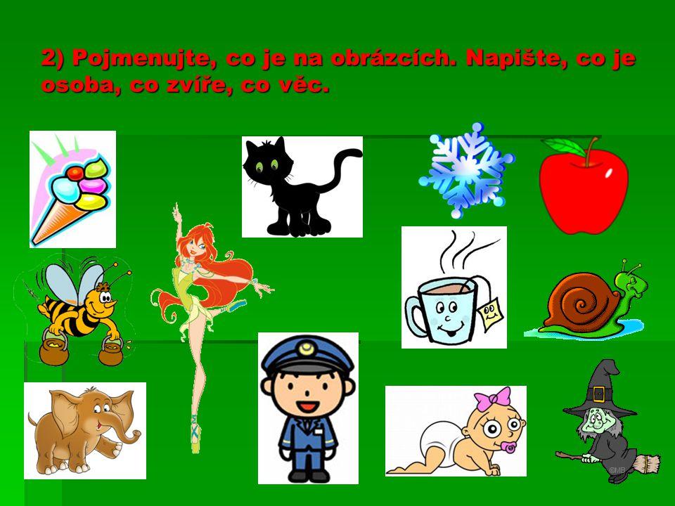 2) Pojmenujte, co je na obrázcích. Napište, co je osoba, co zvíře, co věc.