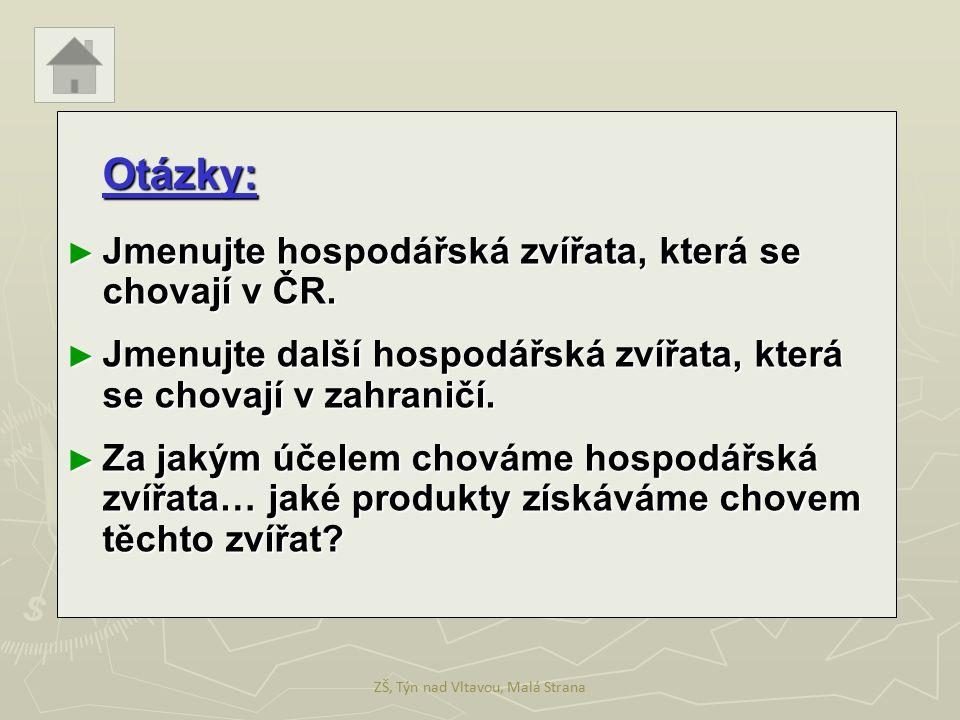 Otázky: ► Jmenujte hospodářská zvířata, která se chovají v ČR. ► Jmenujte další hospodářská zvířata, která se chovají v zahraničí. ► Za jakým účelem c