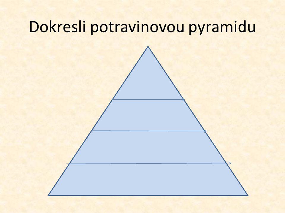 Dokresli potravinovou pyramidu