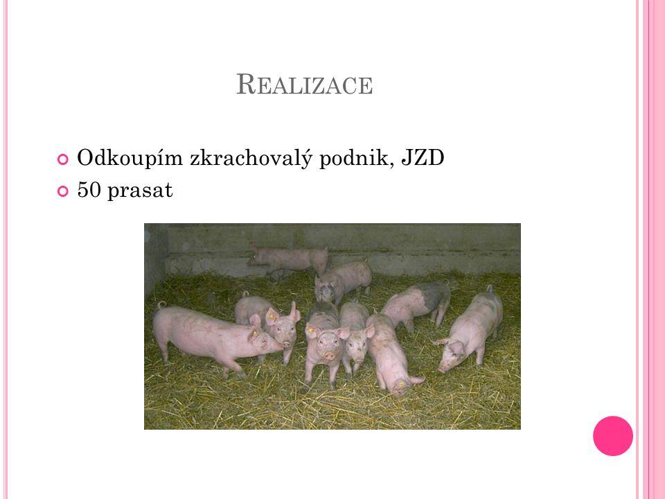 R EALIZACE Odkoupím zkrachovalý podnik, JZD 50 prasat
