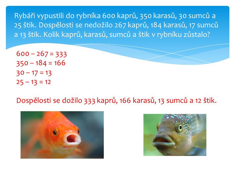 Rybáři vypustili do rybníka 600 kaprů, 350 karasů, 30 sumců a 25 štik.