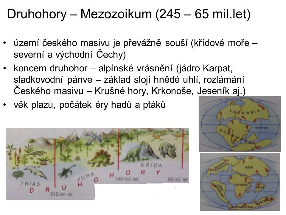 Druhohory – Mezozoikum (245 – 65 mil.let) území českého masivu je převážně souší (křídové moře – severní a východní Čechy) koncem druhohor – alpínské
