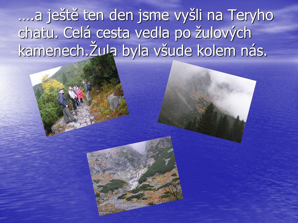 ….a ještě ten den jsme vyšli na Teryho chatu. Celá cesta vedla po žulových kamenech.Žula byla všude kolem nás.