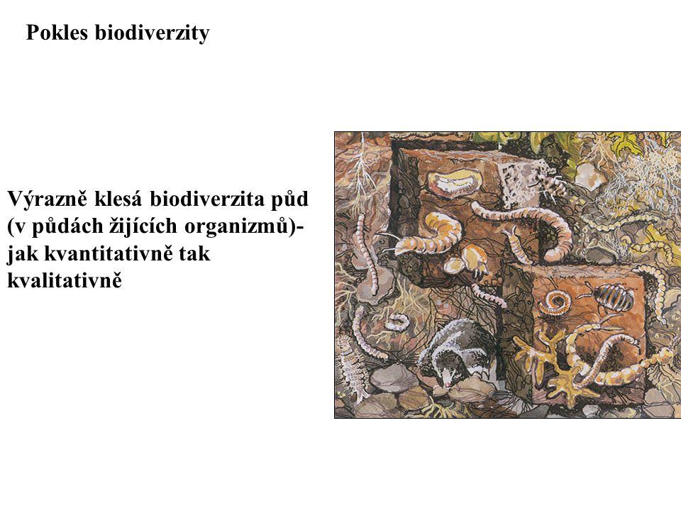 Výrazně klesá biodiverzita půd (v půdách žijících organizmů)- jak kvantitativně tak kvalitativně Pokles biodiverzity