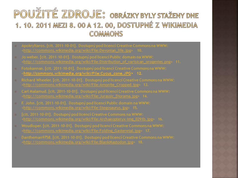 cédric sorel. [cit. 2011-10-01]. Dostupný pod licencí Public domain na WWW: 1.http://commons.wikimedia.org/wiki/File:Big_bang.jpg  Tbower. [cit. 20