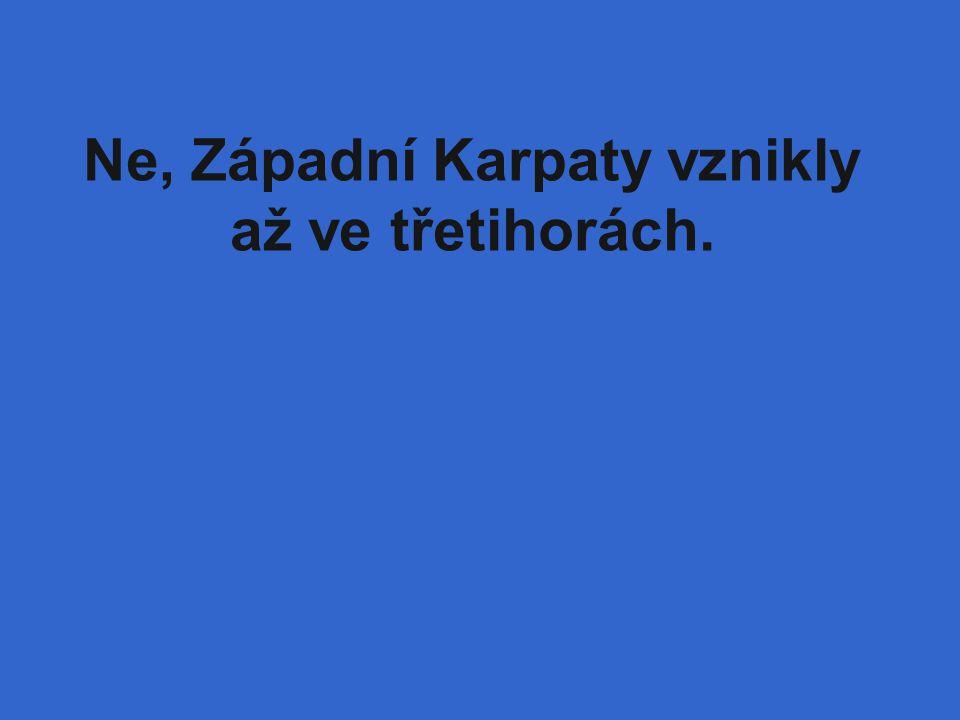 Ne, Západní Karpaty vznikly až ve třetihorách.
