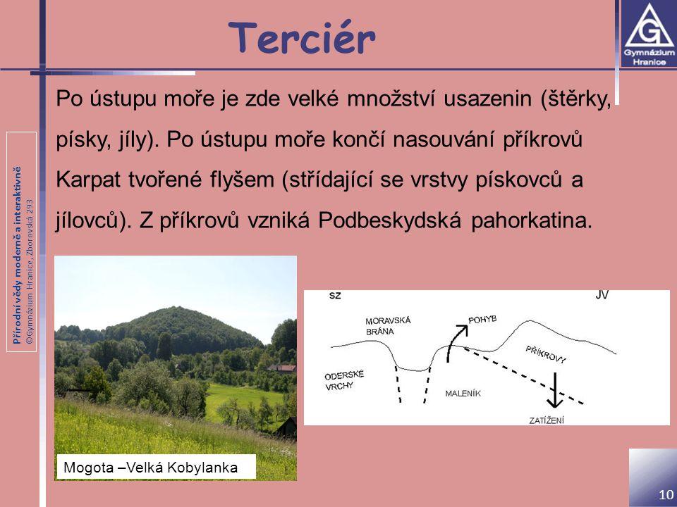 Přírodní vědy moderně a interaktivně ©Gymnázium Hranice, Zborovská 293 Terciér Po ústupu moře je zde velké množství usazenin (štěrky, písky, jíly). Po