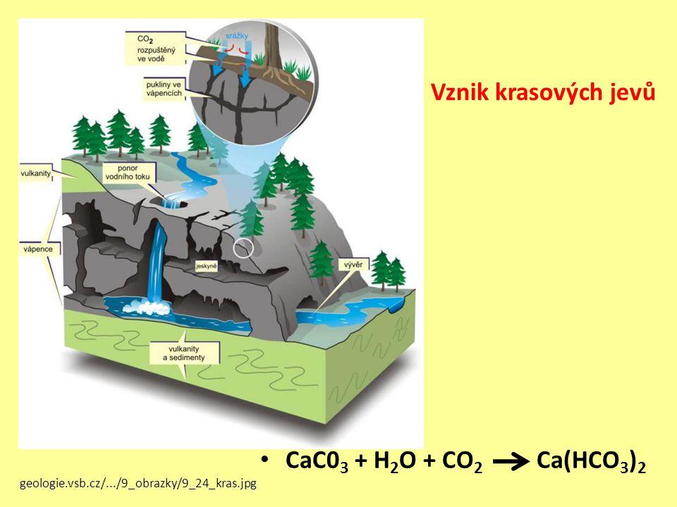 Vznik krasových jevů CaC0 3 + H 2 O + CO 2 Ca(HCO 3 ) 2 geologie.vsb.cz/.../9_obrazky/9_24_kras.jpg