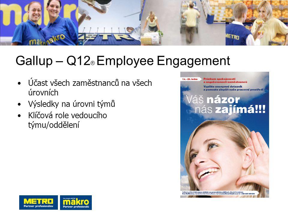 Gallup – Q12 ® Employee Engagement Účast všech zaměstnanců na všech úrovních Výsledky na úrovni týmů Klíčová role vedoucího týmu/oddělení