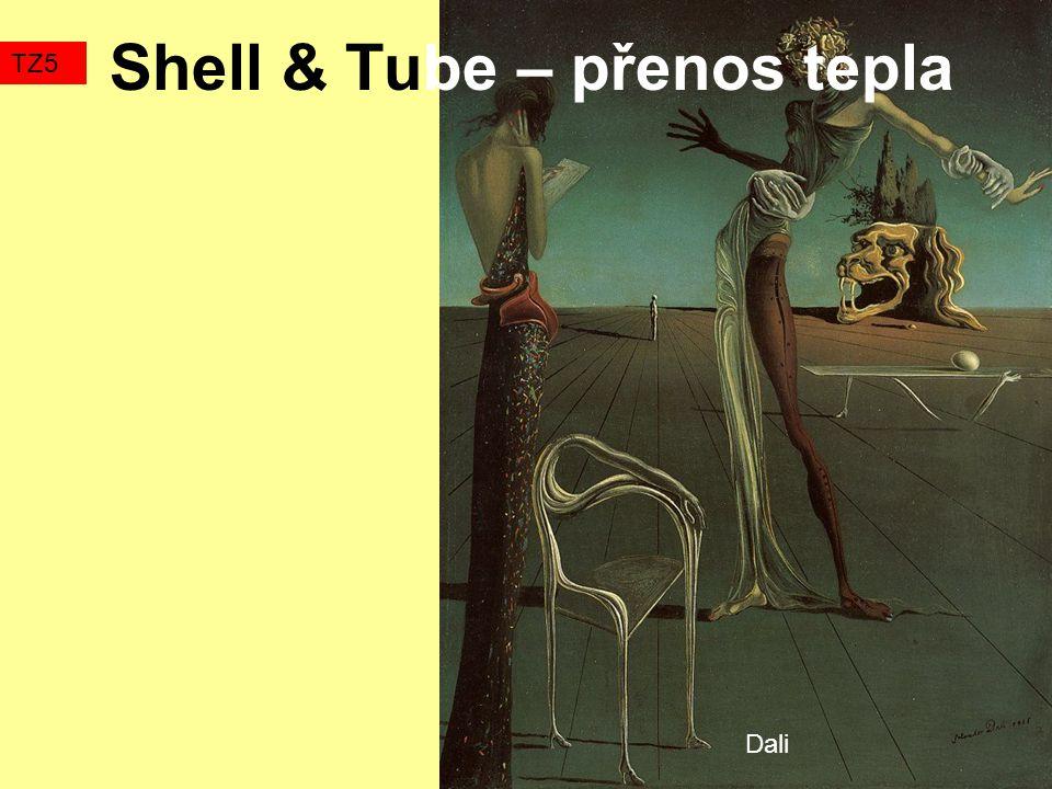 Shell & Tube – přenos tepla TZ5 Dali