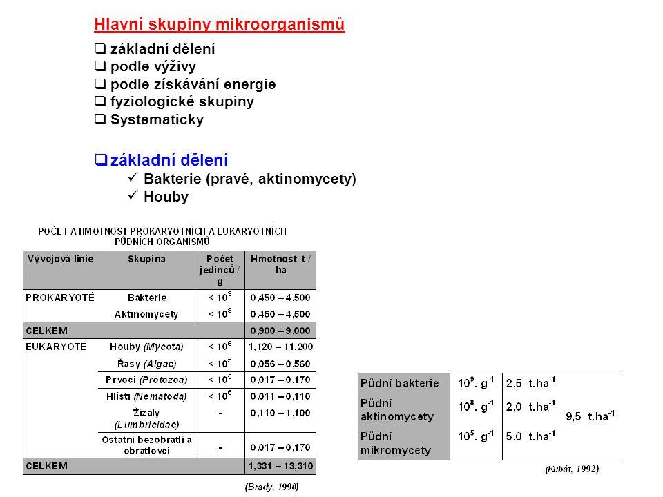  podle výživy autotrofní: zdrojem C je CO 2 heterotrofní: zdrojem C org.