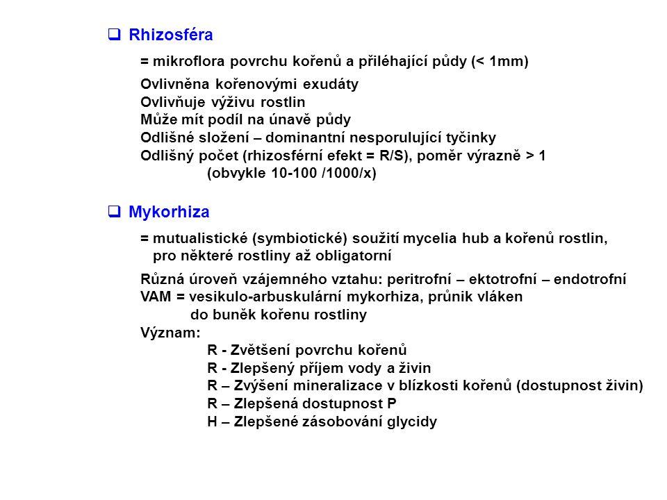  Rhizosféra = mikroflora povrchu kořenů a přiléhající půdy (< 1mm) Ovlivněna kořenovými exudáty Ovlivňuje výživu rostlin Může mít podíl na únavě půdy Odlišné složení – dominantní nesporulující tyčinky Odlišný počet (rhizosférní efekt = R/S), poměr výrazně > 1 (obvykle 10-100 /1000/x)  Mykorhiza = mutualistické (symbiotické) soužití mycelia hub a kořenů rostlin, pro některé rostliny až obligatorní Různá úroveň vzájemného vztahu: peritrofní – ektotrofní – endotrofní VAM = vesikulo-arbuskulární mykorhiza, průnik vláken do buněk kořenu rostliny Význam: R - Zvětšení povrchu kořenů R - Zlepšený příjem vody a živin R – Zvýšení mineralizace v blízkosti kořenů (dostupnost živin) R – Zlepšená dostupnost P H – Zlepšené zásobování glycidy