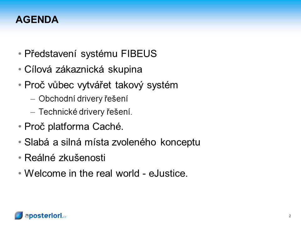 2 AGENDA Představení systému FIBEUS Cílová zákaznická skupina Proč vůbec vytvářet takový systém – Obchodní drivery řešení – Technické drivery řešení.