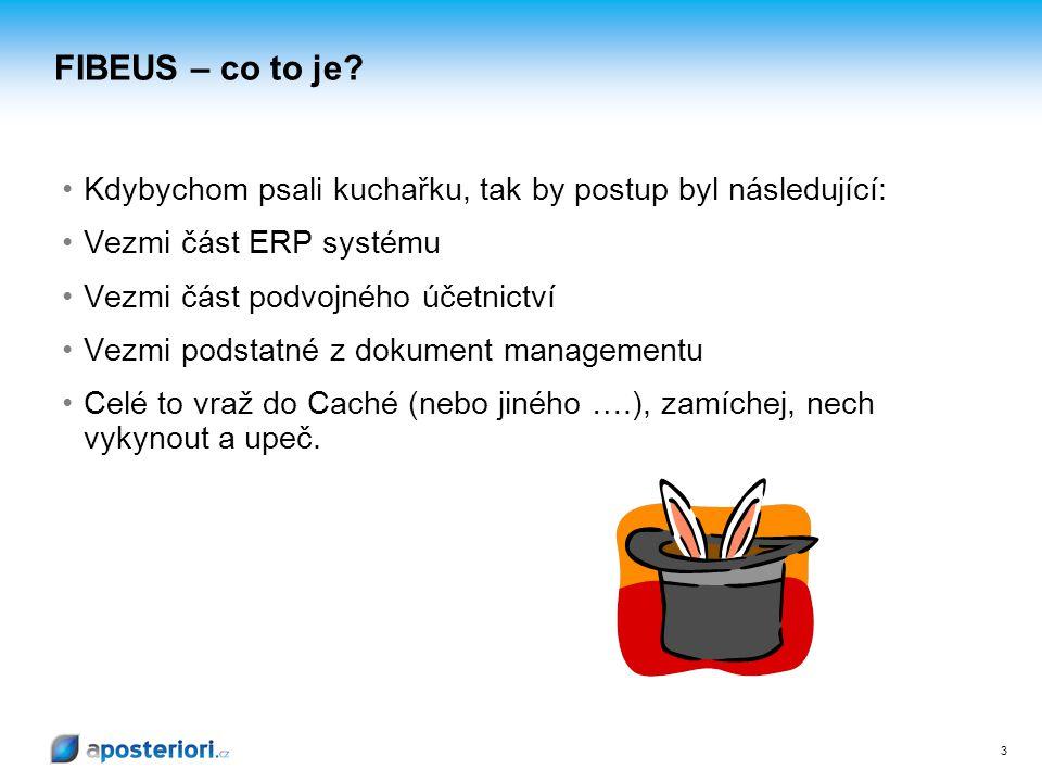 3 FIBEUS – co to je? Kdybychom psali kuchařku, tak by postup byl následující: Vezmi část ERP systému Vezmi část podvojného účetnictví Vezmi podstatné