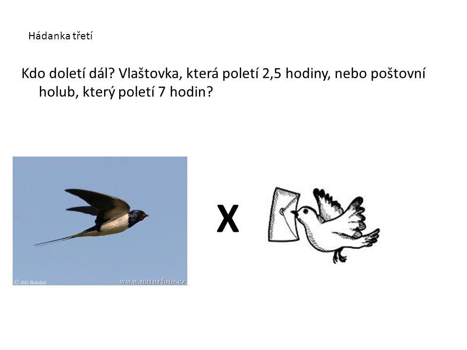 Hádanka třetí Kdo doletí dál? Vlaštovka, která poletí 2,5 hodiny, nebo poštovní holub, který poletí 7 hodin? X