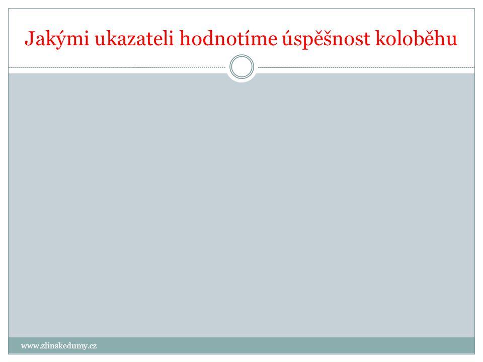Jakými ukazateli hodnotíme úspěšnost koloběhu www.zlinskedumy.cz