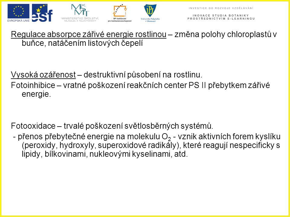 Regulace absorpce zářivé energie rostlinou – změna polohy chloroplastů v buňce, natáčením listových čepelí Vysoká ozářenost – destruktivní působení na