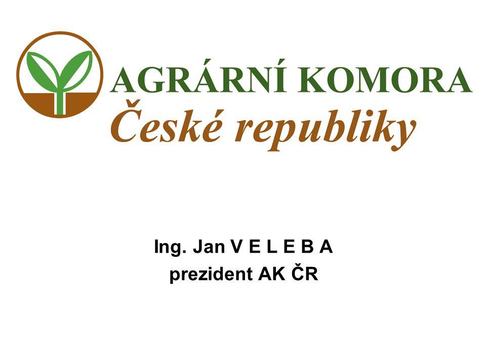 Ing. Jan V E L E B A prezident AK ČR