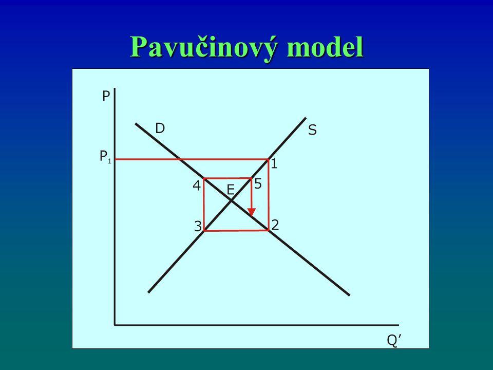 Pavučinový model