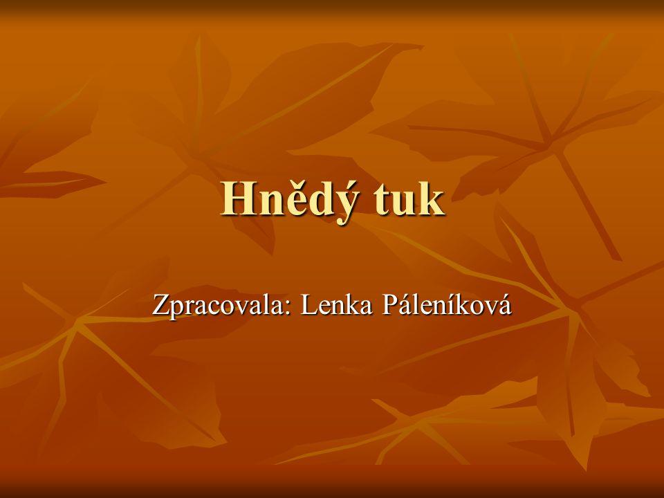 Hnědý tuk Zpracovala: Lenka Páleníková