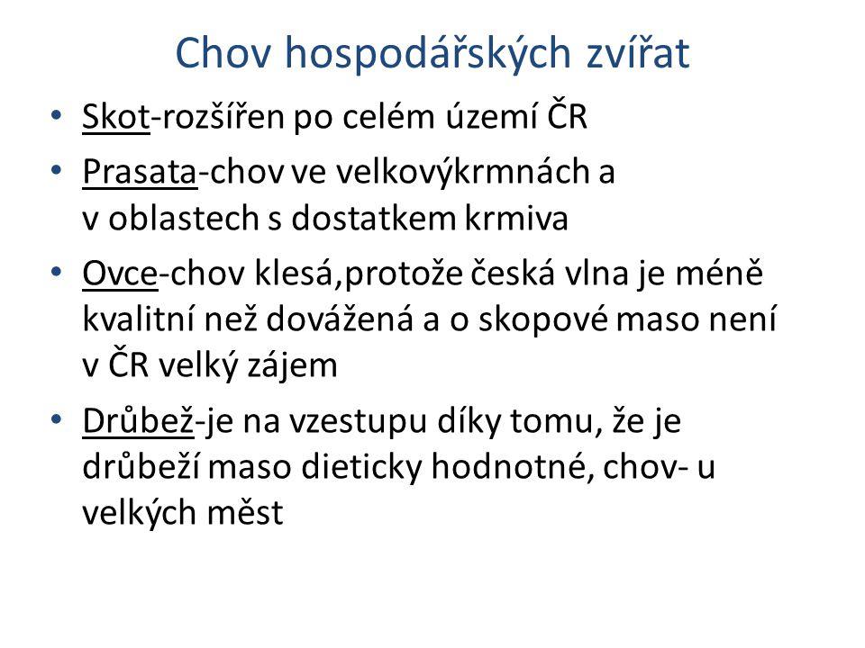 Chov hospodářských zvířat Skot-rozšířen po celém území ČR Prasata-chov ve velkovýkrmnách a v oblastech s dostatkem krmiva Ovce-chov klesá,protože česk