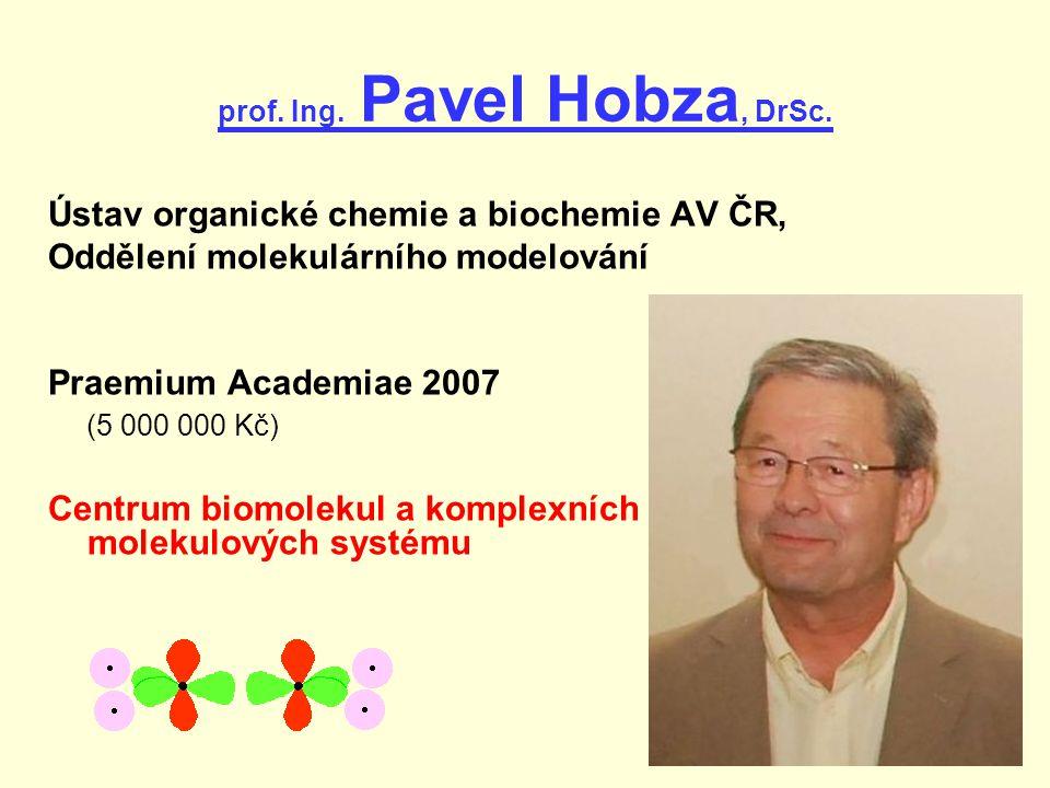 prof.Ing. Pavel Hobza, DrSc.