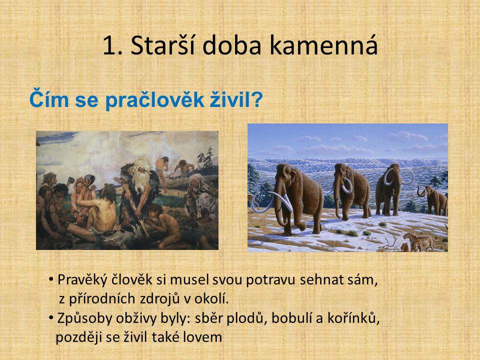 1.Starší doba kamenná Čím se pračlověk živil.