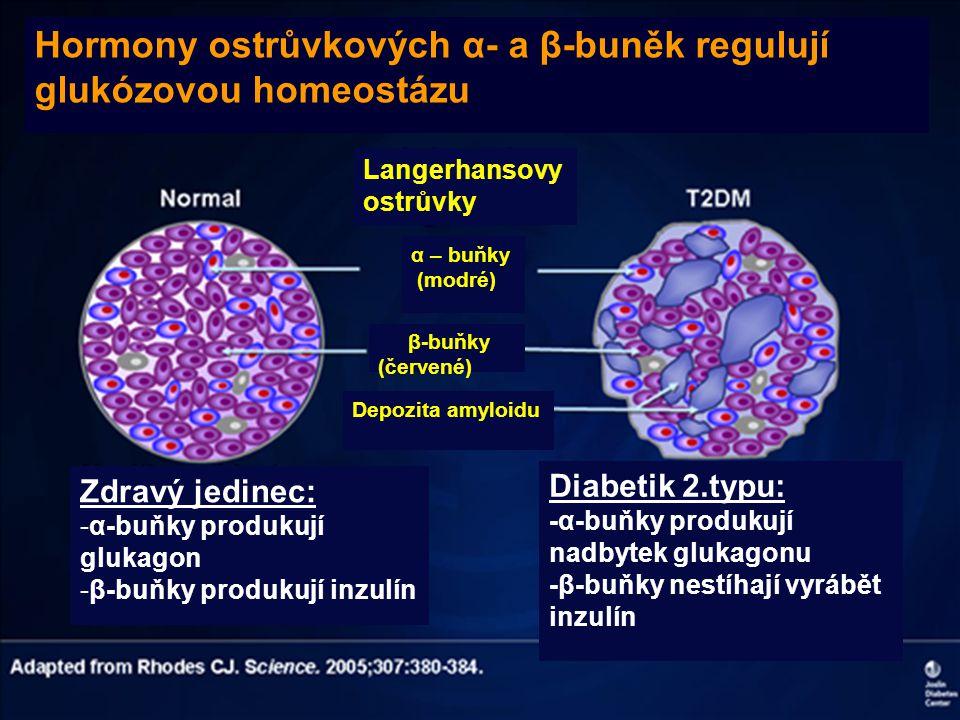 Hormony ostrůvkových α- a β-buněk regulují glukózovou homeostázu Langerhansovy ostrůvky α – buňky (modré) β-buňky (červené) Depozita amyloidu Zdravý j