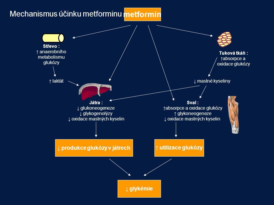 metformin Střevo : ↑ anaerobního metabolismu glukózy Tuková tkáň : ↑absorpce a oxidace glukózy Játra : ↓ glukoneogeneze ↓ glykogenolýzy ↓ oxidace mast