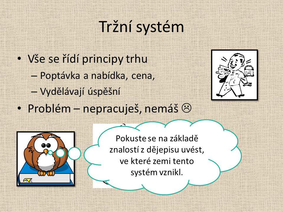 Smíšený systém Kombinuje příkazový systém a tržní systém.