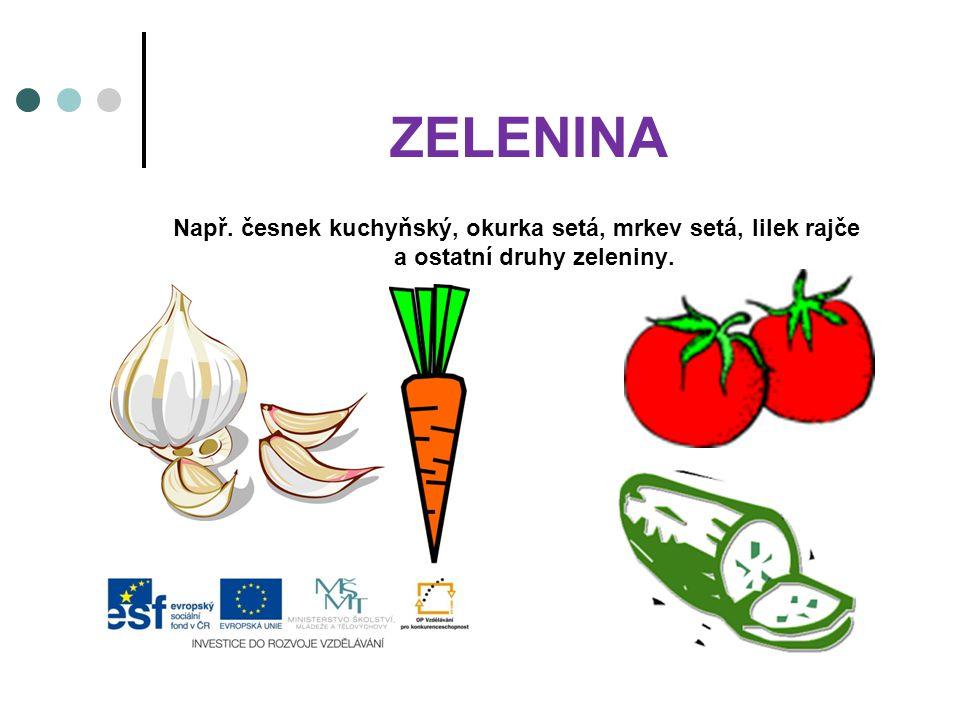 ZELENINA Např. česnek kuchyňský, okurka setá, mrkev setá, lilek rajče a ostatní druhy zeleniny.