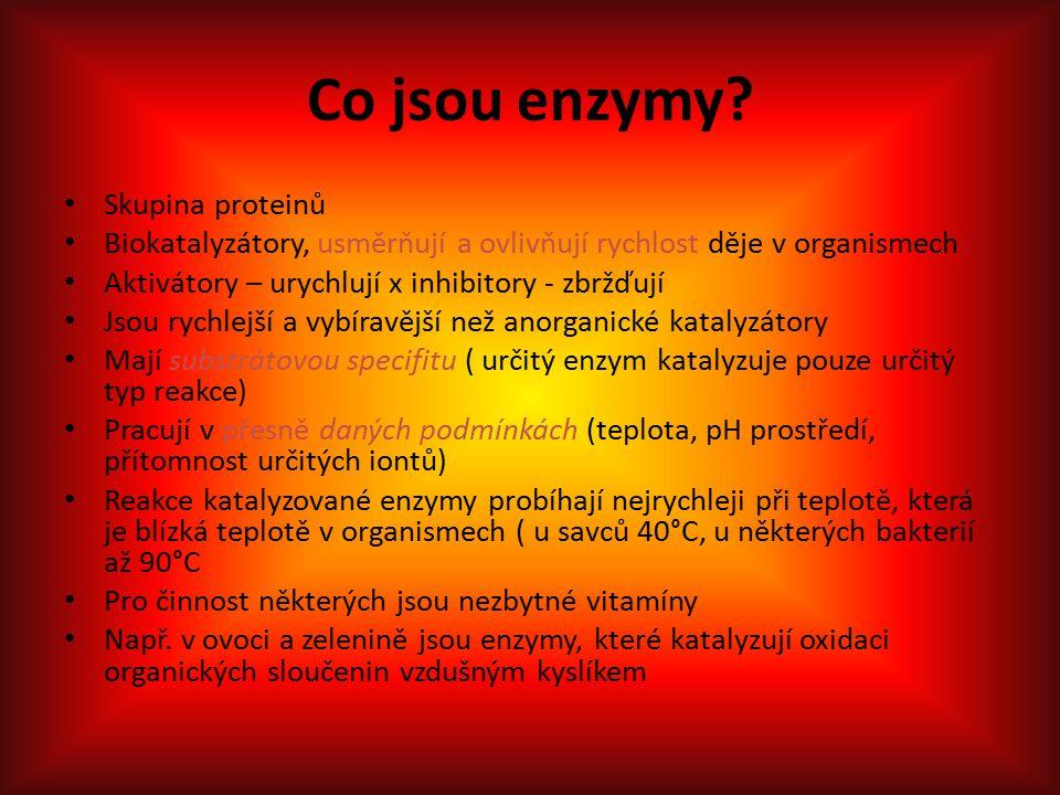 Co jsou enzymy.