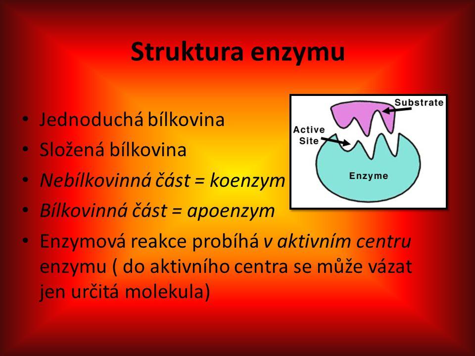 Struktura enzymu Jednoduchá bílkovina Složená bílkovina Nebílkovinná část = koenzym Bílkovinná část = apoenzym Enzymová reakce probíhá v aktivním centru enzymu ( do aktivního centra se může vázat jen určitá molekula)