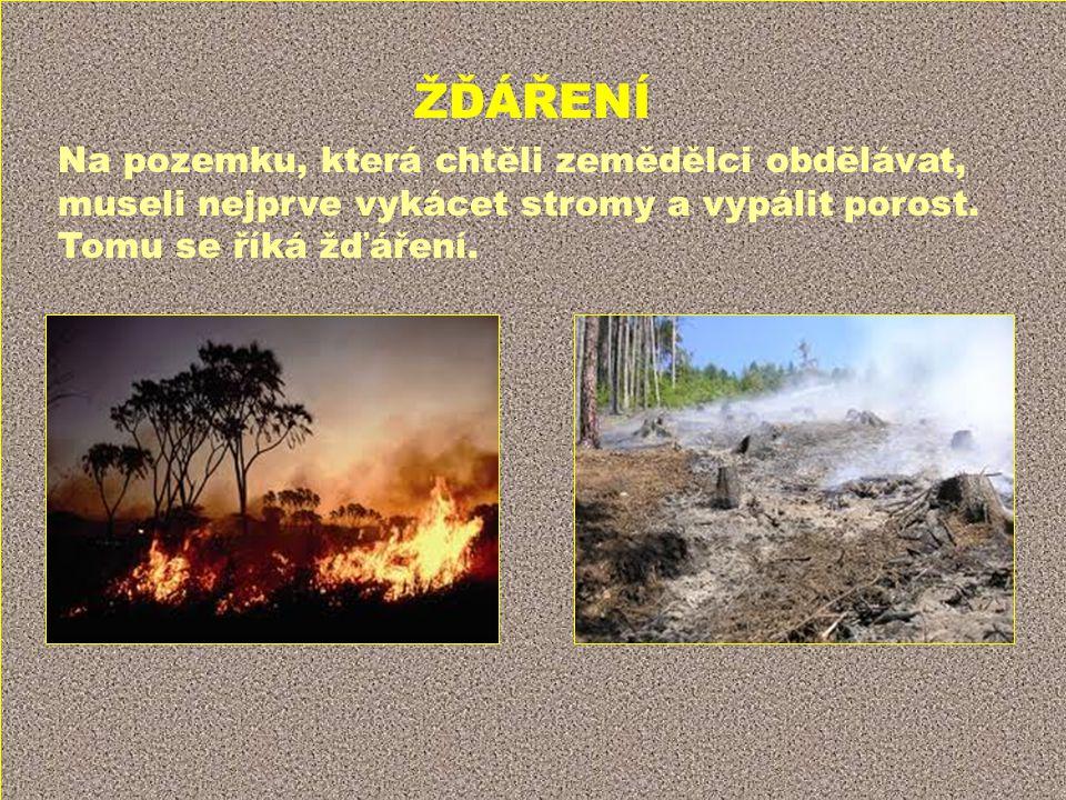 ŽĎÁŘENÍ Na pozemku, která chtěli zemědělci obdělávat, museli nejprve vykácet stromy a vypálit porost. Tomu se říká žďáření.