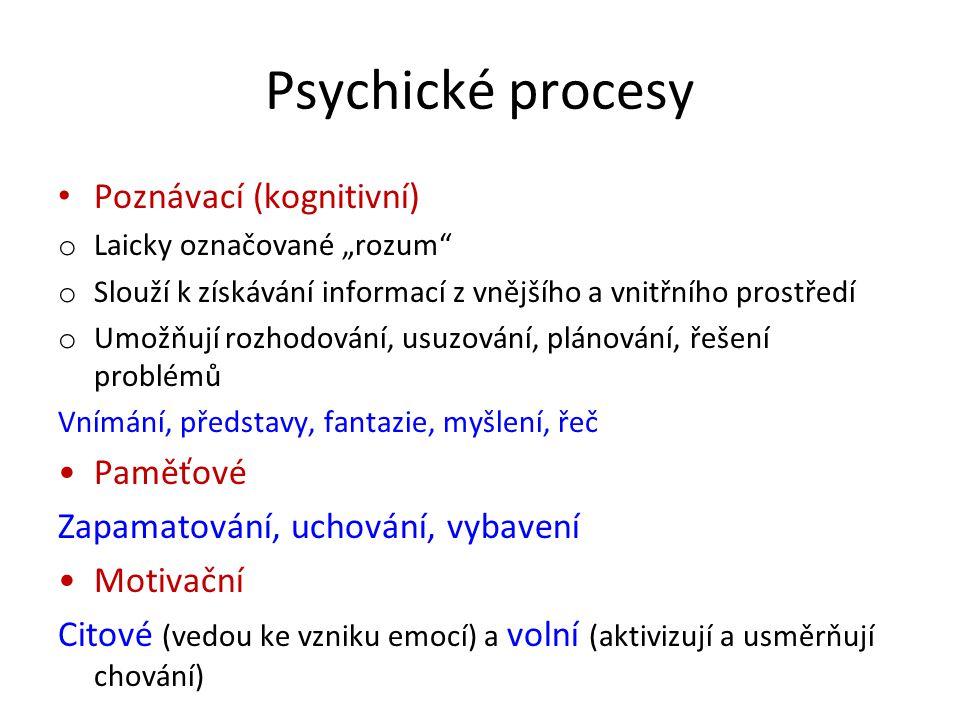 """Psychické procesy Poznávací (kognitivní) o Laicky označované """"rozum"""" o Slouží k získávání informací z vnějšího a vnitřního prostředí o Umožňují rozhod"""