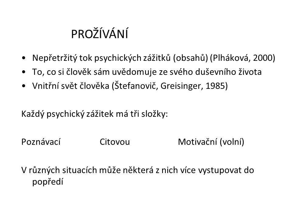 Nepřetržitý tok psychických zážitků (obsahů) (Plháková, 2000) To, co si člověk sám uvědomuje ze svého duševního života Vnitřní svět člověka (Štefanovi