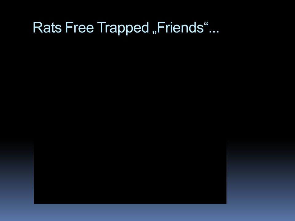 "Rats Free Trapped ""Friends""..."