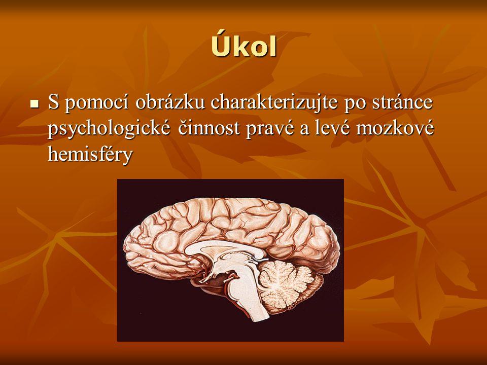 Řešení úkolu Levá hemisféra mozku je zaměřena na logické uvažování a u většiny osob je využívána při vědomí jako hlavní.