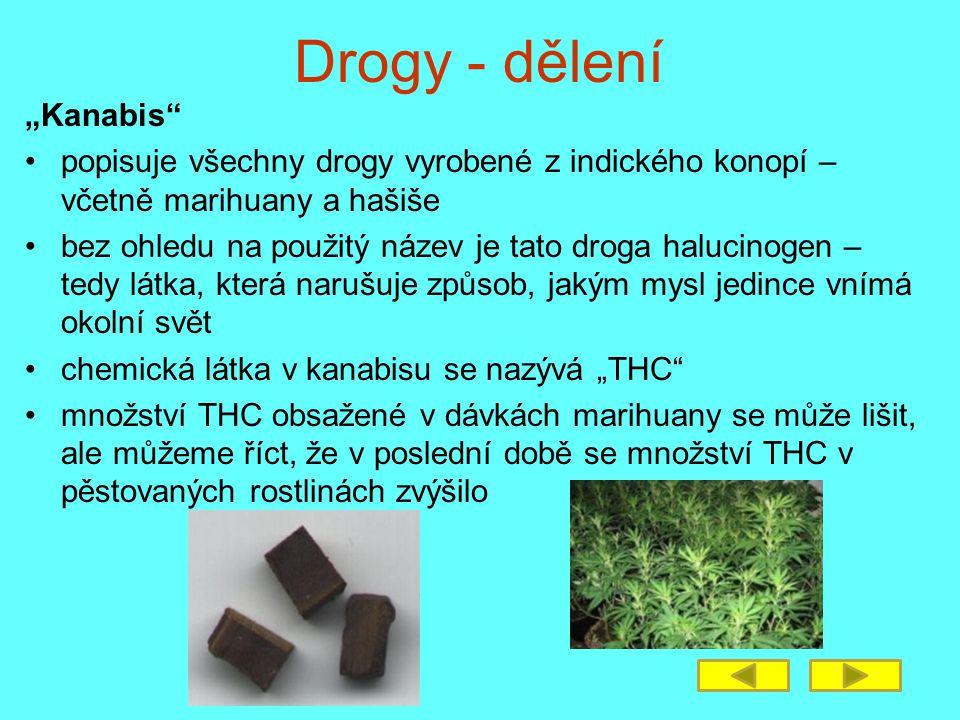 """Drogy - dělení """"Kanabis"""" popisuje všechny drogy vyrobené z indického konopí – včetně marihuany a hašiše bez ohledu na použitý název je tato droga halu"""