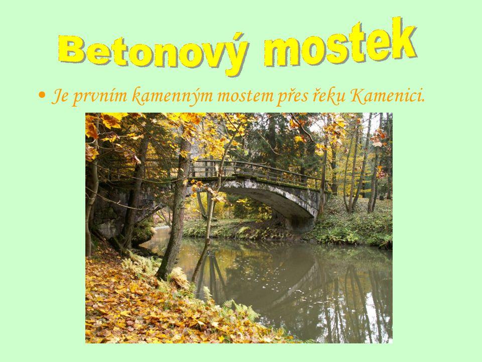 Je prvním kamenným mostem přes řeku Kamenici.