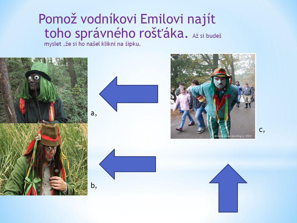 Pomož vodníkovi Emilovi najít toho správného rošťáka. Až si budeš myslet,že si ho našel klikni na šipku. a, b, c,