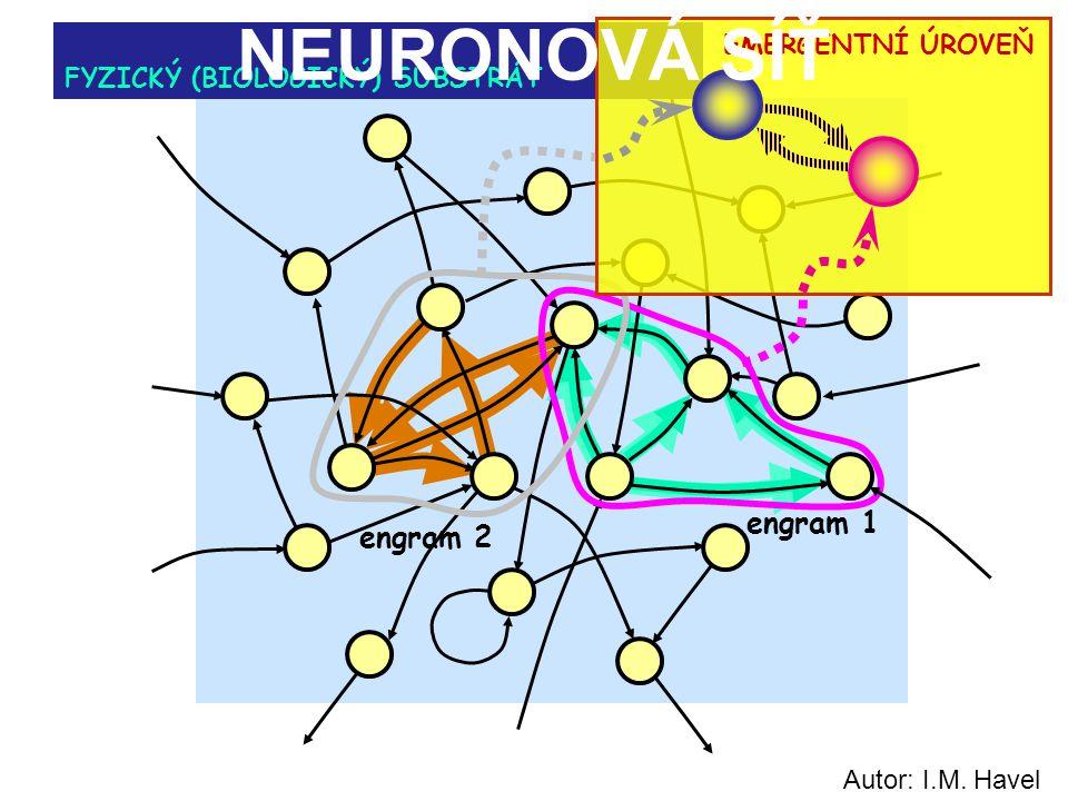 engram 1 FYZICKÝ (BIOLOGICKÝ) SUBSTRÁT EMERGENTNÍ ÚROVEŇ engram 2 NEURONOVÁ SÍŤ Autor: I.M. Havel